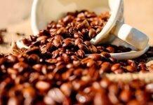 produca-cafe-qualidade
