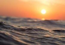 pesca-sustentavel